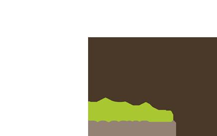 Российское дерево года