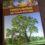 Подарочный фотоальбом «Уникальные деревья России»